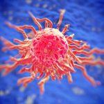 Рак. Правда о заболевании
